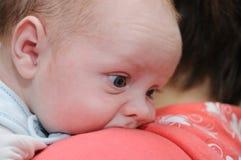 Newborn on mother´s shoulder Stock Photo