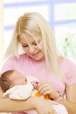 Newborn in mothers hands Royalty Free Stock Photos