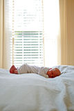 Newborn Nap Time. 12 day old baby napping in front of window Royalty Free Stock Photo