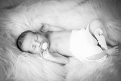 Newborn Nathan. Little sweet newborn boy sleep Royalty Free Stock Images