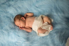 Newborn Nathan. Little sweet newborn boy sleep Royalty Free Stock Photo