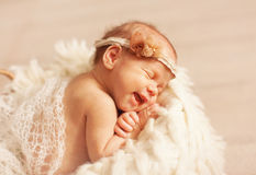 Newborn one week old Stock Images