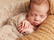 Newborn one week old Stock Photography