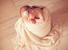 Newborn one week old Royalty Free Stock Images
