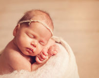 Newborn one week old Royalty Free Stock Image