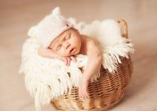 Newborn one week old Stock Image