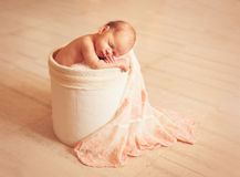 Newborn one week old Royalty Free Stock Image