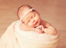Newborn one week old Royalty Free Stock Photography