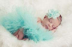 Newborn portrait of baby girl in teal tutu and flower headband. royalty free stock photography