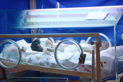 Newborn premature in incubator Royalty Free Stock Photo