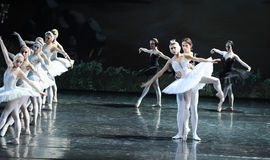 The newborn Princess Ojta and prince get together-The last scene of Swan Lake-ballet Swan Lake Stock Image