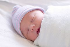 Newborn resting royalty free stock image