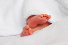 Newborn´s tiny and cute feet Royalty Free Stock Images