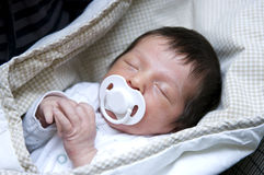 Newborn sleeping Stock Images