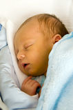 Newborn sleeping. One week baby sleeping. Face is a little yellow because of neonatal jaundice royalty free stock image