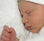 Newborn Sleeping Stock Photo
