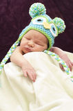 Newborn sleeping Royalty Free Stock Photography