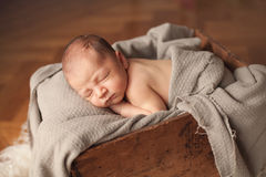 Newborn sleeping baby boy Royalty Free Stock Images