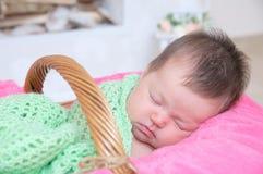 Newborn sleeping in basket, baby girl lying in pink blanket, cute child. Daughter announcement Stock Image