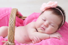 Newborn sleeping in basket, baby girl lying in pink blanket, cute child. Daughter announcement Royalty Free Stock Image