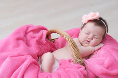 Newborn sleeping in basket, baby girl lying in pink blanket, cute child. Daughter announcement Stock Photography