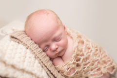 Newborn Sleeping on Chair Royalty Free Stock Images