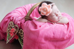 Newborn sleeping. Infant baby girl closeup lying on pink blanket in basket decorated with wooden heart Stock Images