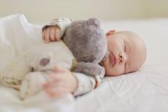 Newborn is sleeping Stock Images