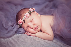 Newborn sleeping princess with roses Stock Images