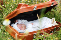 Newborn sleeping in a suitcase Stock Images