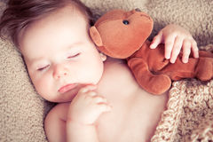 Newborn sleeping with a toy. Newborn baby boy sleeping with a teddy bear toy Royalty Free Stock Photo