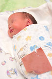 The newborn sleeps. Image asleep new-born wrapped in a diaper Royalty Free Stock Photos