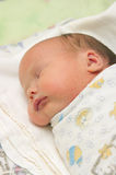 The newborn sleeps. Image asleep new-born wrapped in a diaper Royalty Free Stock Images