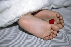 The newborn sleeps under a blanket, legs with a small heart for the holiday royalty free stock images