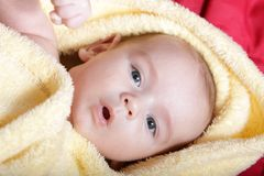 Newborn in soft yellow blanket Stock Photos