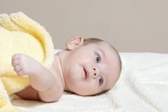 Newborn in soft yellow blanket Stock Images