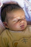 Newborn - Sweet sleeping royalty free stock image