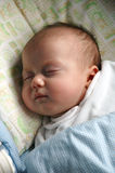 Newborn - Sweet sleeping Stock Images