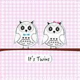 Newborn twin baby owl, baby shower greeting card vector background Stock Photos