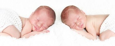 Newborn twin baby portrait. Portrait of a newborn baby twin baby boys sleeping on a white blanket royalty free stock image