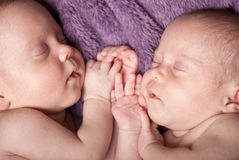 Newborn twins Royalty Free Stock Photos