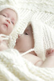 Newborn twins babies Royalty Free Stock Photo