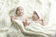 Newborn twins babies Royalty Free Stock Images