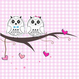 Newborn twins baby with owl baby shower greeting card Stock Image