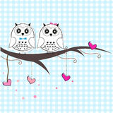 Newborn twins baby with owl baby shower greeting card Stock Photos