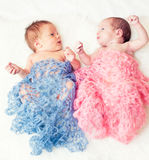 Newborn twins. Boy and girl Stock Image