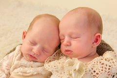 Newborn twins closeup. Three weeks old newborn identical twin babies dressed in lace Stock Images