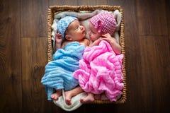 Newborn twins inside the wicker basket. Newborn twins lying down inside the wicker basket Royalty Free Stock Image