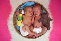 Newborn twins kids sleeps. In the basket Royalty Free Stock Photos