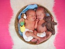 Newborn twins kids sleeps. In the basket Royalty Free Stock Image